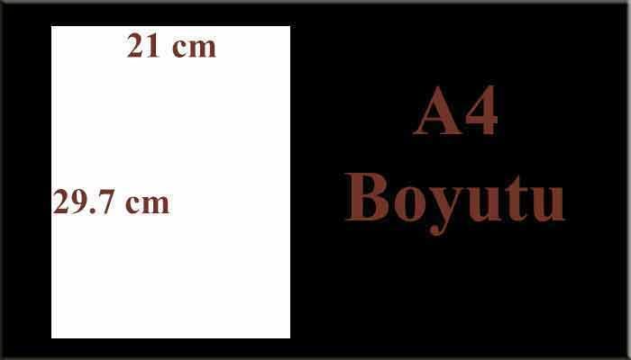 A4 Boyutu ve A4 Kağıt Ölçüleri Nelerdir?
