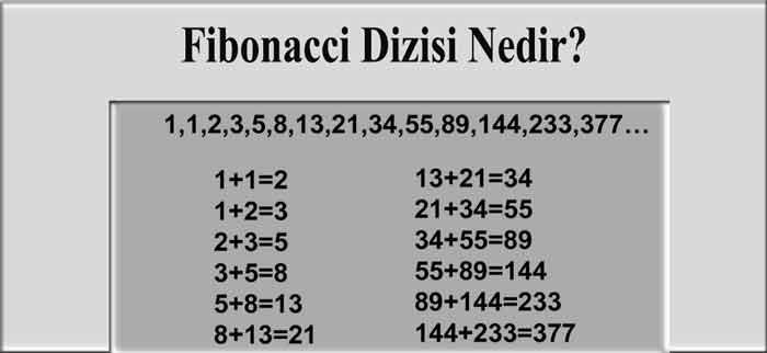 Fibonacci Dizisi Nedir?