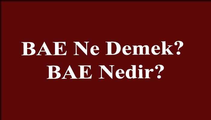 BAE Ne Demek? BAE Nedir?