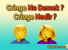 cringe-ne-demek;cringe-nedir;cringe-anlamı;cringe-olmak;ciringe-ne-demek;ciringe-nedir;cringe,ciringe